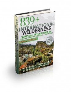 International wilderness 3d(2)