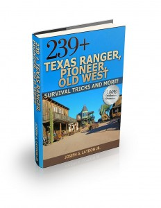 Texas Ranger 3d-a