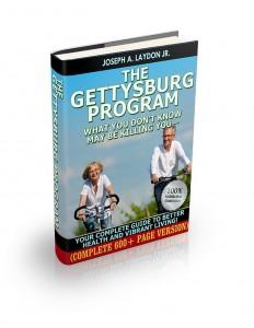 GETTYSBURG PROGRAM 3d600